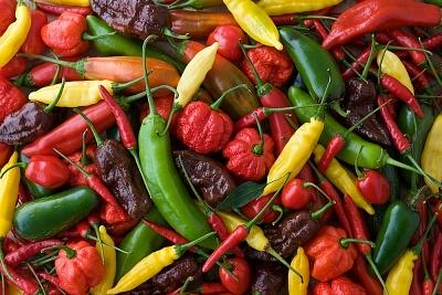 Ismerd meg a chili legfontosabb hatásait!