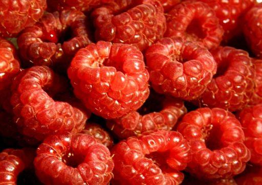 Ezerarcú gyümölcs: a málna jótékony hatásai