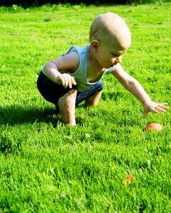 baba a parkban