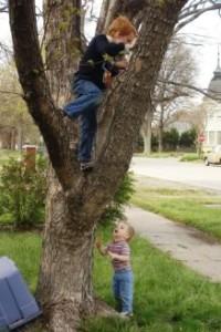 fára mászik