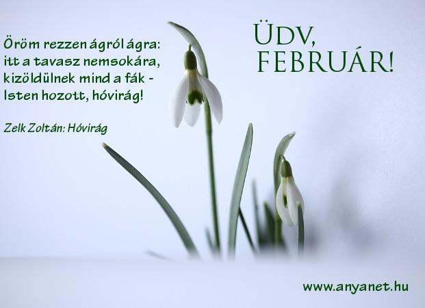 Ezeket tudnod kell: februári jeles napok, hagyományok, tavaszcsalogató vers kicsiknek. nagyoknak