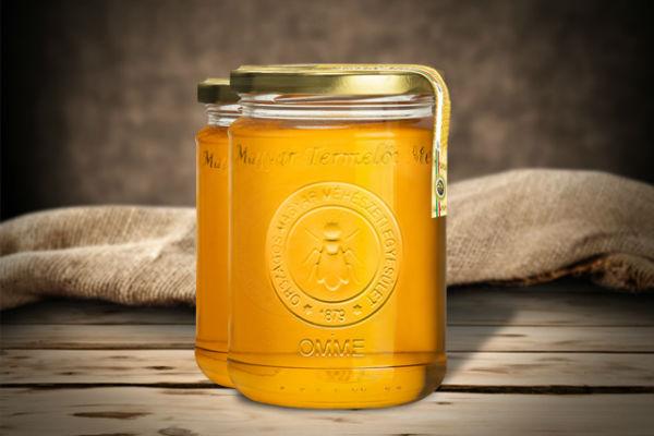 Mézes csodaszerek a megfázás ellen: egyszerű, de fantasztikus házi gyógymódok