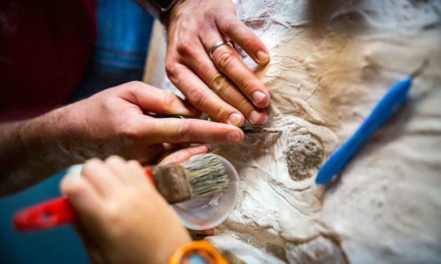 Varázslatos dínó-ásatás otthon: régészkedjetek a konyhaasztalon!