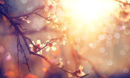 Készüljünk a tavaszra D-vitamin pótlással: kell a napfény!