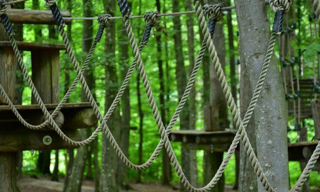 Vízpart helyett aktív kikapcsolódás: 5 kalandpark, ahol adrenalinban nem lesz hiány