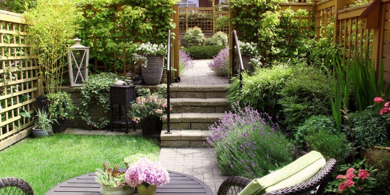 Feng shui a kertedben – egyensúly a lelkedben