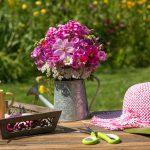 5 tipp a tavaszi fáradtság átvészelésére:Újuljunk meg együtt a természettel!