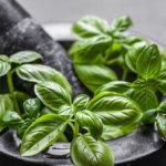 Mutasd a kedvenc fűszered, megmondom, ki vagy! – Találkozz a hazai gasztronómia krémjével a 2020-as Konyhakiállításon