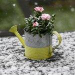 Fehérbe borult a fél ország: mutatjuk az áprilisi havazás csodás képeit