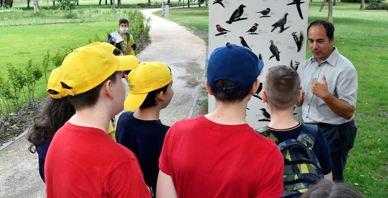 Átadták a Madárbarátok Tanösvényét: a diákok a Városliget madár- és növényvilágát ismerhetik meg