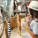 6 állatkert, állatpark és állatsimogató, amelyet talán nem is ismersz